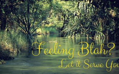 Feeling Blah? Let it Serve You!
